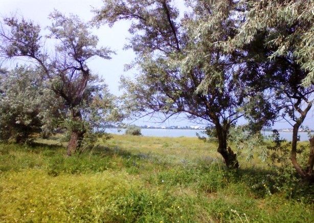 Евпатория озеро