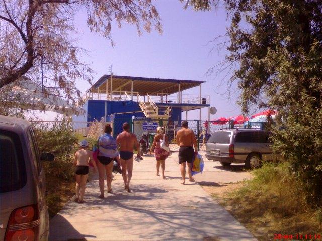 женщины на пляжах ходят писать в кустики скрытые камеры